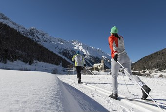 Cross-Country Skiing and Biathlon
