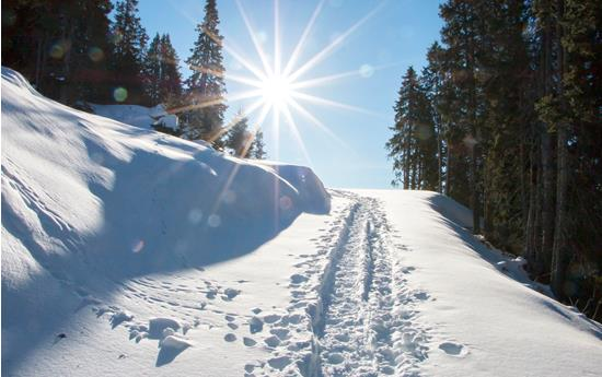 Snowshoe hiking at the Monte Tramontana mountain
